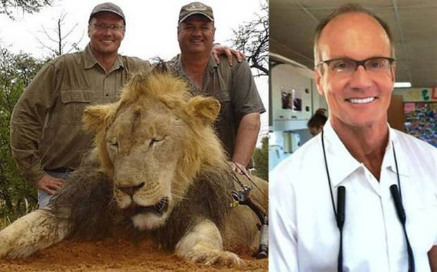 Cecil the lion's killer revealed as American dentist Walt Palmer. Cecil the lion ñ the most famous creature in one of Zimbabwe's national parks ñ was killed by an American hunter who has boasted about shooting a menagerie of animals with his bow and arrow, The Telegraph can reveal. Walter Palmer, a dentist from Minnesota, is believed to have paid £35,000 to shoot and kill the much-loved lion with a bow and arrow. The animal was shot on July 1 in Hwange National Park. Picture taken without permission at request of news desk